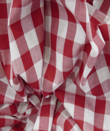 Gingham Fabric 1 Inch Check - Red