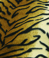 Kids Prints on Fleece - Tiger 19
