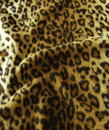 Kids Prints on Fleece - Leopard 04