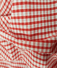 Gingham Check-1/8 Small Check - Red