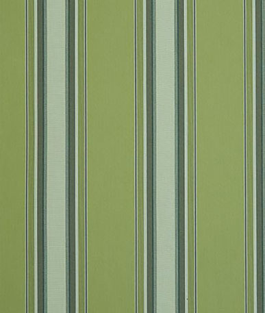 Chicago Stripe Awning - Green (D310)
