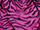 Fabric Color: Cerise Tiger