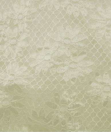 Ivory Flower and Trellis Stretch Lace - Ivory