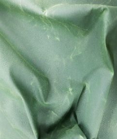 Heavy Weight Wax Fabric - Apple